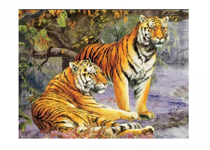 Vivid Tiger Image 3d Lenticular Image For Home 0.76mm Thickness 3d Animal Pictures