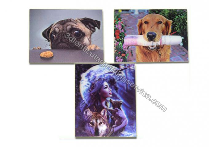 3D Plastic Material Lenticular Personalized Fridge Magnets UV Printing Gift