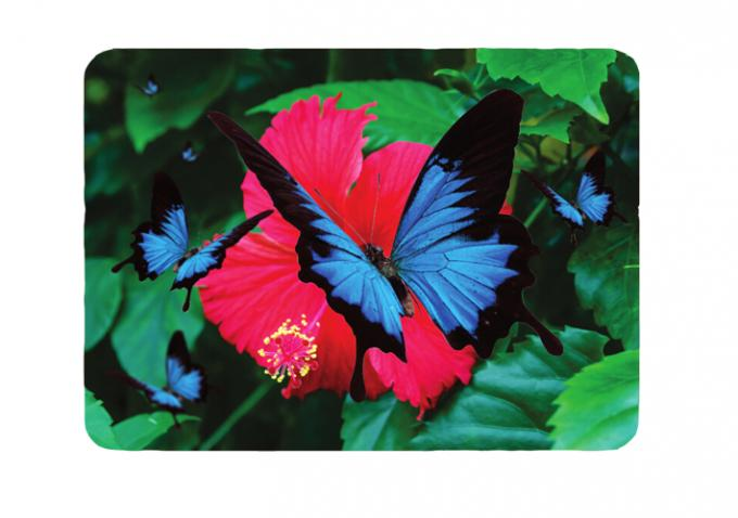 3D Lenticular Placemats For Gift CMYK Printing