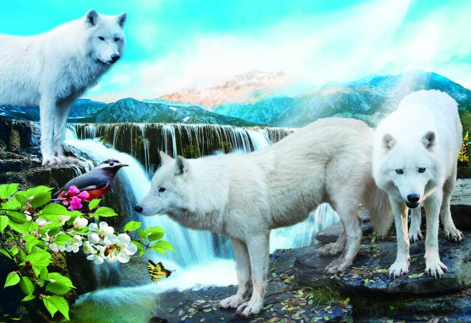 Pet / Pvc / PP Wolf Animal Photos Lenticular 3d Posters For Store Eco - Friendly