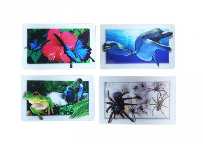 3D Lenticular Dolphin Fridge Magnet Eco - Friendly 0.6mm PET Material