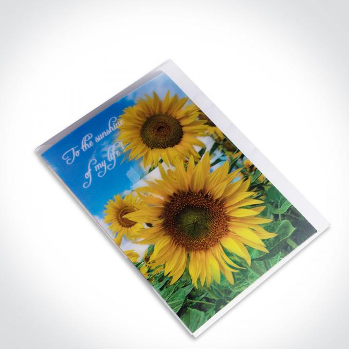 Birthday Beautiful Sights 3D Lenticular Card Color UV Offset Printing