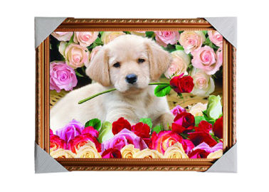China Customised PET Pictures 3D Lenticular Printing Service Stock 3D Image PS Frame supplier