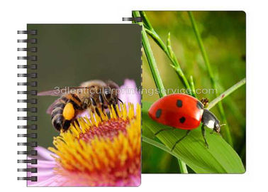 China 0.6mm PET Material 3D Lenticular Notebook For Office Stationery supplier