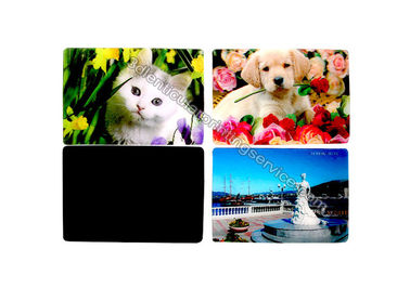 China Cartoon PP PET PVC Image 3D Lentiuclar Magnets UV Printing Souvenir supplier