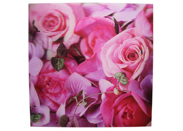 China Frameless 3D Pictures Lenticular Printing Services 40x40cm PET Printing supplier