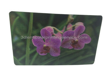 China Vivid Plant Two Sides Printing 3D Lenticular Card Plant Introduction supplier