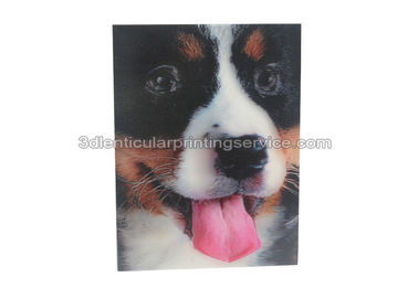 China Invitation Lenticular Card Printing Luggage Tag For Personal Custom PET / PP 3D Design supplier