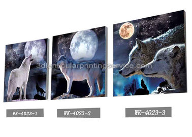 China PET Plastic Printing Service / 3D Lenticular Pictures 40x40cm Home Decoration supplier