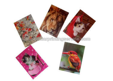China Small Size Adhesive 3D Lenticular Stickers PET/ PP Printing For Key Chain supplier