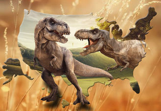 China Lifelike Animal Dinosaur 3D Lenticular Postcard 12x17cm Customized Theme Pictures supplier