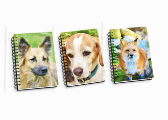 China Customize A4 / A5 / A6 3D Spiral Flip Notebook Lenticular Flip For School Student supplier