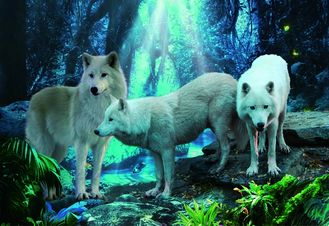 China Pet / Pvc / PP Wolf Animal Photos Lenticular 3d Posters For Store Eco - Friendly supplier