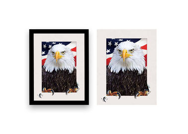 China 5d Depth Wild Eagle Poster 3D Lenticular Pictures With Black Plastic Frame / Lenticular Photo Printing supplier