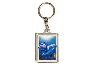 China 3.7x5.7cm 3D Lenticular Printing Service For Gifts / Acrylic Keychain With Dolphin supplier