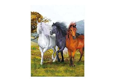 China Horse 3D Lenticular Picture For Advertisement Poster Frame Or Frameless supplier