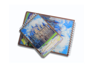 China Light Weight 3d Cover Notebook / Custom Design Lenticular 3d Poster Notebook supplier