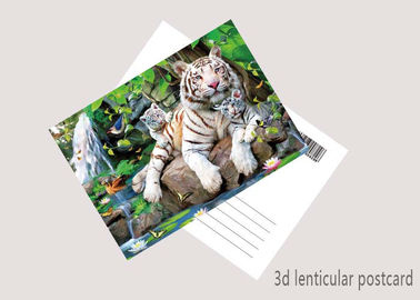 China Durable Animal Theme OEM 3D Lenticular Postcard / Gift Card Printing supplier
