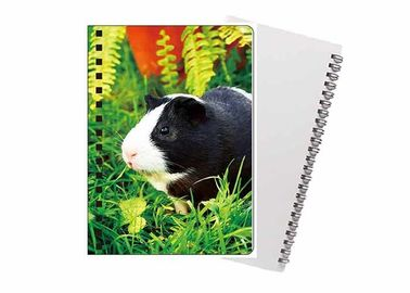 China A4 3D Lenticular Notebook Eco - Friendly Material / Personalised Bookmarks For Schools supplier
