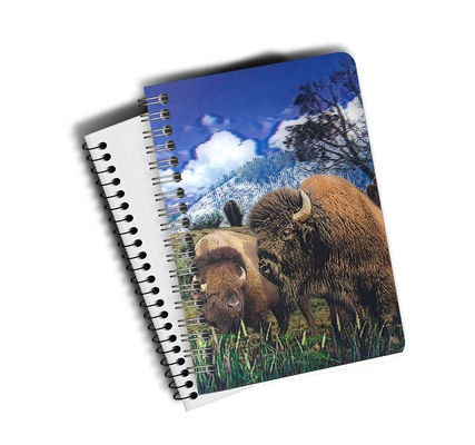3D Lenticular Notebook Stationery 3D Lenticular Printing Service  for Student