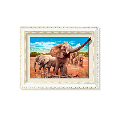 Gold Frame 5d Lenticular Pictures 30*40cm for Home Decoration