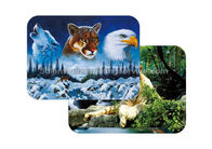 Waterproof Plastice 3D Lenticular Placemats Directly Printing PET