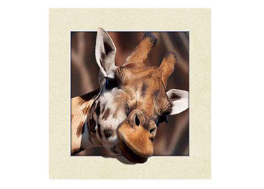 Animal Stock 5D 3D Lenticular Pictures PET Printing Service Deer image
