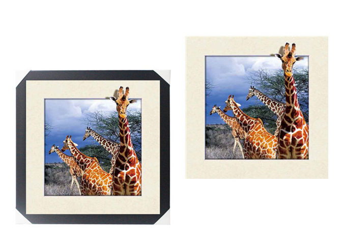 Lovely Cute Animal Art Printing 5d Lenticular Picture / HD Animal Pictures